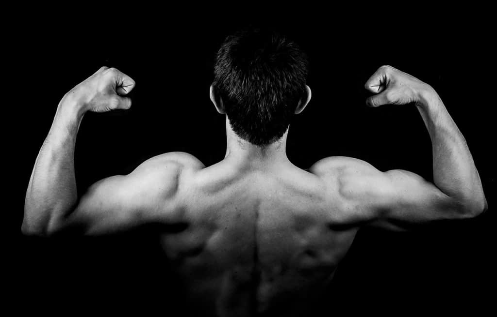 The ideal proper nutrition for athletes and bodybuilders